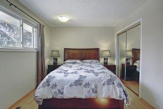 Photo 23: 9623 19 Street SW in Calgary: Palliser Detached for sale : MLS®# A1097991