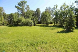Photo 3: 568 Beach Road: Rural Wetaskiwin County Rural Land/Vacant Lot for sale : MLS®# E4251590