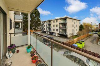 Photo 13: 203 1537 Morrison St in Victoria: Vi Jubilee Condo for sale : MLS®# 870633