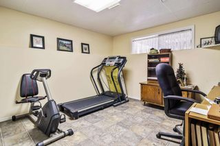 Photo 31: 36241 DAWSON Road in Abbotsford: Abbotsford East House for sale : MLS®# R2600791