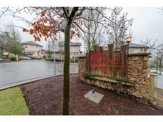 """Photo 20: 80 20350 68 Avenue in Langley: Willoughby Heights Townhouse for sale in """"SUNRIDGE"""" : MLS®# R2029357"""