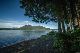 Photo 46: 950 Campbell St in Tofino: PA Tofino House for sale (Port Alberni)  : MLS®# 853715