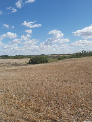 Photo 4: Rystrom Acreage in Corman Park: Lot/Land for sale (Corman Park Rm No. 344)  : MLS®# SK866589