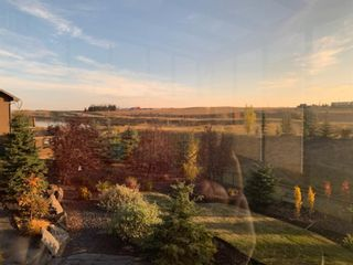 Photo 50: 214 Montenaro Place in Rural Rocky View County: Rural Rocky View MD Detached for sale : MLS®# A1098643