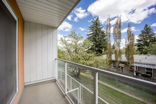 Photo 16: 202 4455C Greenview Drive NE in Calgary: Greenview Apartment for sale : MLS®# A1110677
