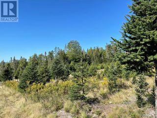 Photo 21: - Saint David Ridge in St. Stephen: Vacant Land for sale : MLS®# NB063465