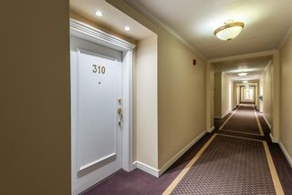 Photo 6: 310 910 70 Avenue SW in Calgary: Kelvin Grove Apartment for sale : MLS®# A1061189