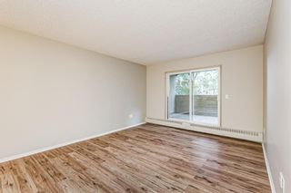 Photo 3: 103 11 Dover Point SE in Calgary: Dover Apartment for sale : MLS®# A1144552
