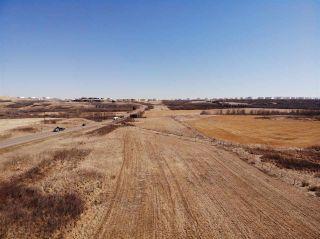 Photo 2: SE-36-42-10-W4 Bitzer Estates: Rural Flagstaff County Rural Land/Vacant Lot for sale : MLS®# E4237924