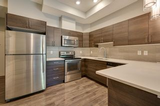Photo 13: 101 10006 83 Avenue in Edmonton: Zone 15 Condo for sale : MLS®# E4254066