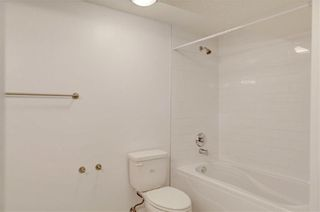 Photo 26: 611 WOODSWORTH Road SE in Calgary: Willow Park Detached for sale : MLS®# C4216444