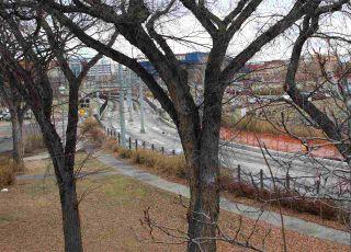 Photo 10:  in Edmonton: Zone 08 Condo for sale : MLS®# E4224757