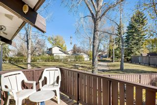 Photo 14: 816 Whitehill Way NE in Calgary: Whitehorn Detached for sale : MLS®# A1154099