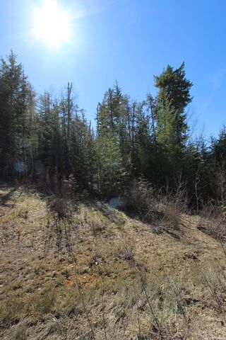 Photo 15: Lot 11 Ivy Road: Eagle Bay Vacant Land for sale (South Shuswap)  : MLS®# 10229941