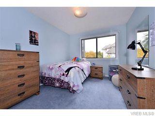 Photo 9: 201 3900 Shelbourne St in VICTORIA: SE Cedar Hill Condo for sale (Saanich East)  : MLS®# 743859