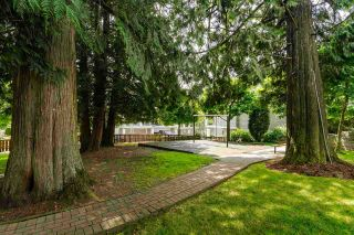"Photo 25: 73 20449 66 Avenue in Langley: Willoughby Heights Townhouse for sale in ""Natures Landing"" : MLS®# R2558309"