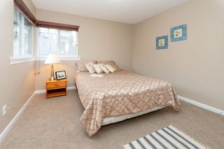 Photo 24: 10682 244 STREET in Maple Ridge: Albion House for sale : MLS®# R2562818