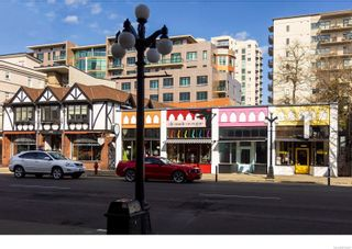 Photo 17: 319 1061 Fort St in : Vi Downtown Condo for sale (Victoria)  : MLS®# 870307