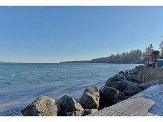 Photo 6: 5011 Cordova Bay Rd in VICTORIA: SE Cordova Bay House for sale (Saanich East)  : MLS®# 748762