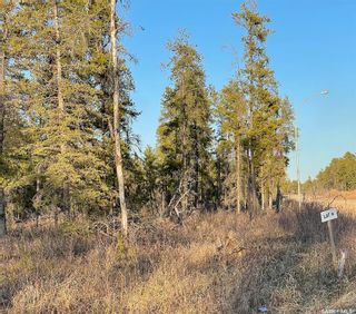 Photo 4: Over 1 acre lots in Hudson Bay: Lot/Land for sale : MLS®# SK850482
