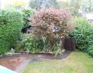 """Photo 10: 3555 W KING EDWARD Avenue in Vancouver: Dunbar House for sale in """"DUNBAR"""" (Vancouver West)  : MLS®# V679454"""