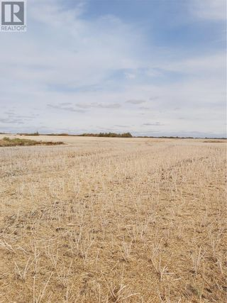 Photo 2: Rystrom Farm in Corman Park Rm No. 344: Agriculture for sale : MLS®# SK828530