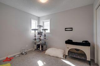Photo 22: 183 Walden Terrace SE in Calgary: Walden Detached for sale : MLS®# A1123149