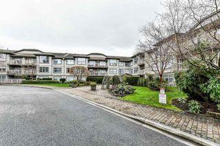 """Photo 2: 209 14885 105 Avenue in Surrey: Guildford Condo for sale in """"REVIVA"""" (North Surrey)  : MLS®# R2350839"""