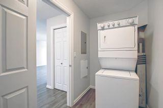 Photo 36: 313 13710 150 Avenue in Edmonton: Zone 27 Condo for sale : MLS®# E4261599