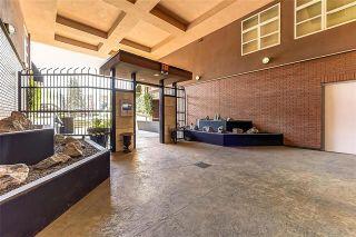 Photo 23: 406 1331 Ellis Street in Kelowna: KN - Kelowna North House for sale : MLS®# 10228679
