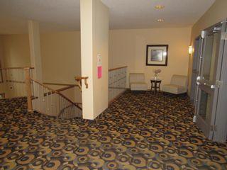 Photo 35: 329 10121 80 Avenue in Edmonton: Zone 17 Condo for sale : MLS®# E4255025