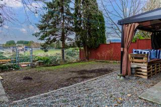 Photo 26: 11749 190TH Street in Pitt Meadows: Central Meadows House for sale : MLS®# R2533608