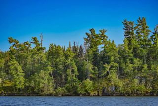 Photo 13: lot 2 Five Point Island in South of Kenora: Vacant Land for sale : MLS®# TB212084