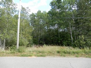 Photo 11: Salem Road in Greenhill: 108-Rural Pictou County Vacant Land for sale (Northern Region)  : MLS®# 202121181