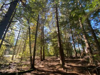 Photo 13: 4665 CRESCENT ROAD in Nelson: Vacant Land for sale : MLS®# 2461363