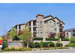"""Photo 2: 227 21009 56 Avenue in Langley: Salmon River Condo for sale in """"Cornerstone"""" : MLS®# R2429408"""
