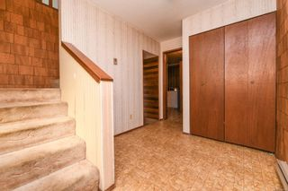 Photo 7: 519 Pritchard Rd in : CV Comox (Town of) House for sale (Comox Valley)  : MLS®# 874878