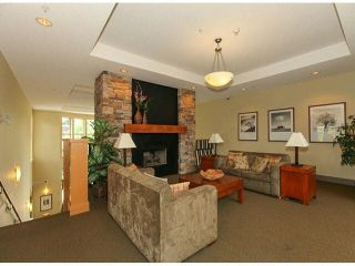 """Photo 18: 201 2988 SILVER SPRINGS Boulevard in Coquitlam: Westwood Plateau Condo for sale in """"TRILLIUM"""" : MLS®# V1072071"""