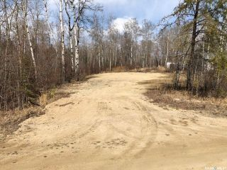 Photo 5: 214 Crestview Drive in Emma Lake: Lot/Land for sale : MLS®# SK851468