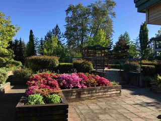 Photo 3: 19528 Fraser Highway in Surrey: Cloverdale Condo for sale : MLS®# R2098502