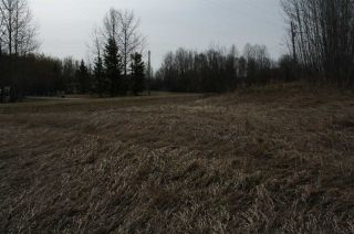 Photo 16: 51 52318 RGE RD 25: Rural Parkland County Rural Land/Vacant Lot for sale : MLS®# E4196603