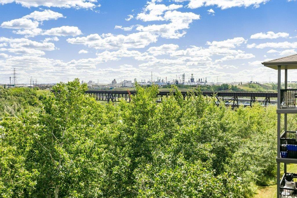 Photo 23: Photos: 403 1188 HYNDMAN Road in Edmonton: Zone 35 Condo for sale : MLS®# E4259060