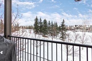 Photo 22: 211 37 Prestwick Drive SE in Calgary: McKenzie Towne Apartment for sale : MLS®# A1055114