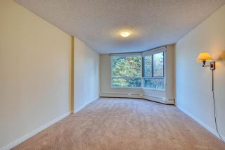 Photo 28: 201 2425 90 Avenue SW in Calgary: Palliser Apartment for sale : MLS®# A1052664