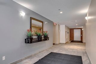 Photo 25: 4208 279 Copperpond Common SE in Calgary: Copperfield Apartment for sale : MLS®# A1095874