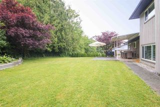 Photo 17: 3121 BABICH Street in Abbotsford: Central Abbotsford House for sale : MLS®# R2179569