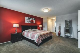 Photo 20: 47 Chapala Landing SE in Calgary: Chaparral Detached for sale : MLS®# A1124054