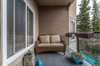 Photo 11: 402 20 Discovery Ridge Close SW in Calgary: Discovery Ridge Apartment for sale : MLS®# A1096409