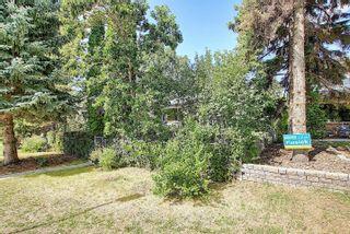 Photo 41: 10504 73 Avenue S in Edmonton: Zone 15 House for sale : MLS®# E4260891