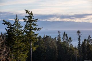 Photo 50: 7235 Spar Tree Way in Sooke: Sk John Muir House for sale : MLS®# 838581